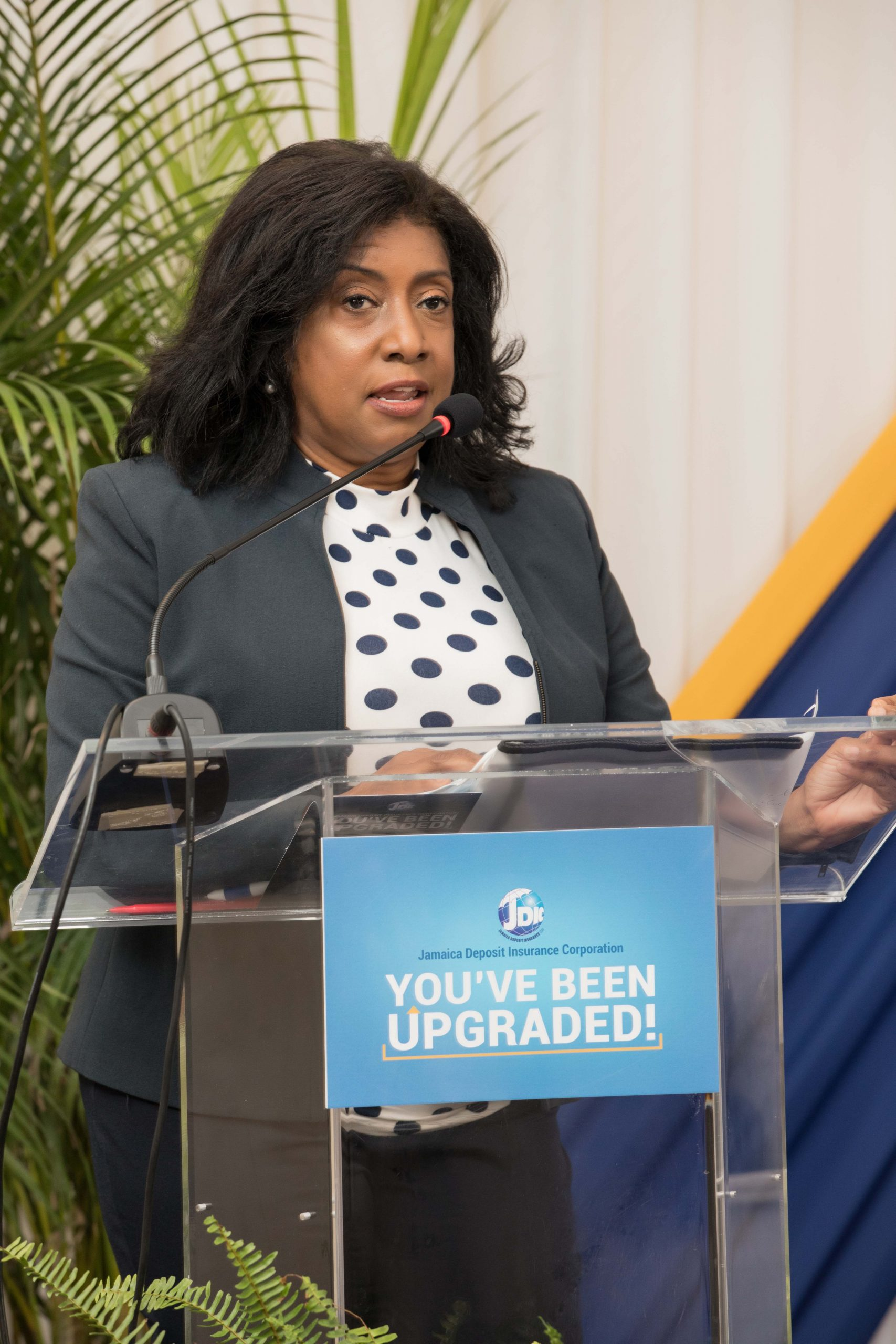 Antoinette McKain, Chief Executive Office, JDIC speaking on the benefits of Deposit Insurance at the JDIC's You've Been Upgraded Digital Townhall held recently.